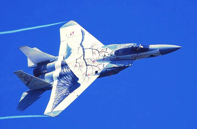 Mitshubishi F 15